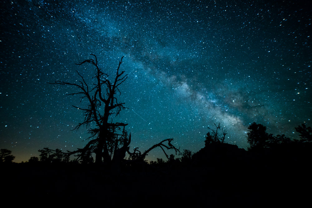 Night Photography - Capturing the Milky Way and a million stars isn't as hard as you think. Our Dark Sky workshop will teach you how to take advantage of Idaho's incredible night skies.