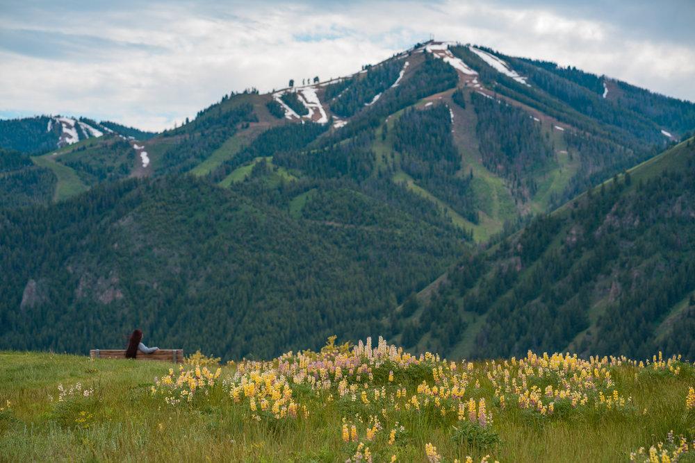 Stanley Idaho Spring Michael Bonocore-2017592.jpg