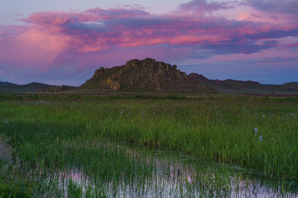Camas Prairie-201778.jpg