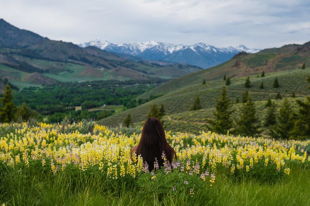 Stanley Idaho Spring Michael Bonocore-2017482.jpg