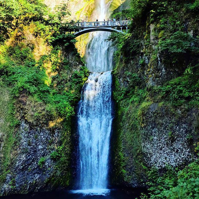 Multnomah Falls #oregon #multnomahfalls #pnw #waterfall #latergram