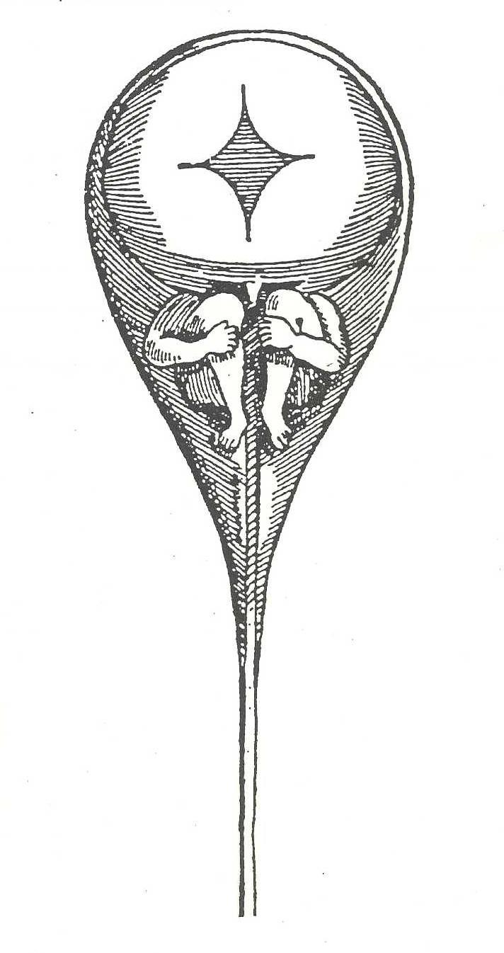 Homunculus. Nicolaus Hartsoeker 1694.jpg