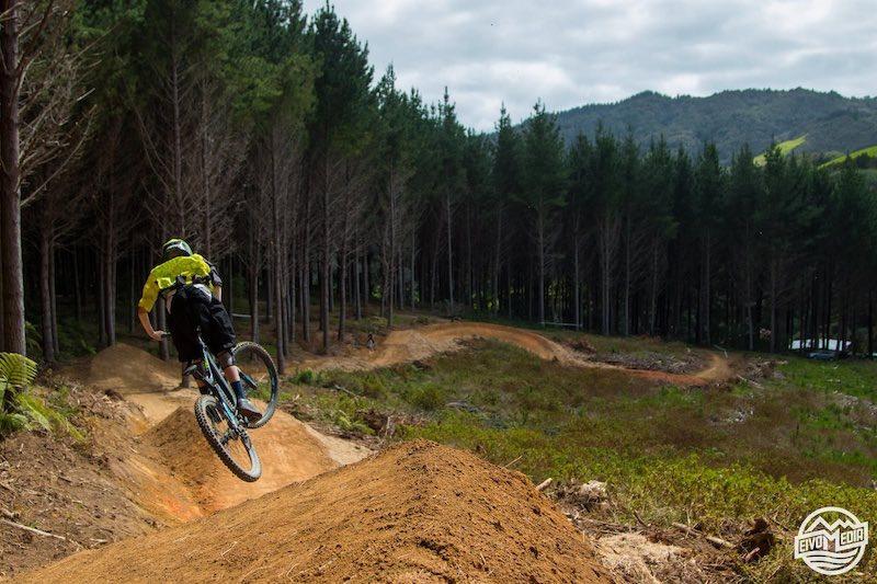 Napier MTB Downhill Freeride X-Country | Mountain Biking New Zealand