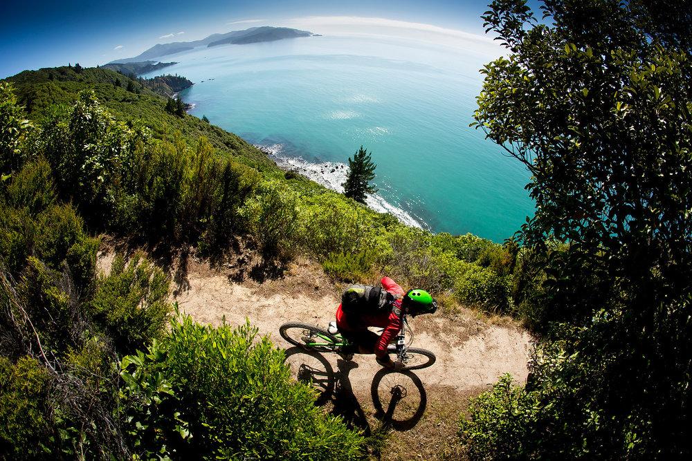 Nelson MTB Downhill Freeride X-Country | Mountain Biking New Zealand