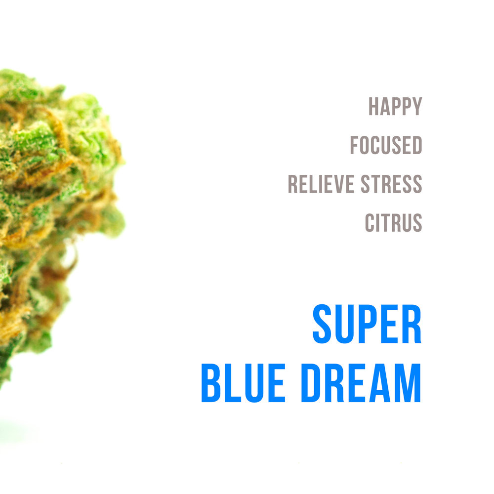 bluedream1.jpg