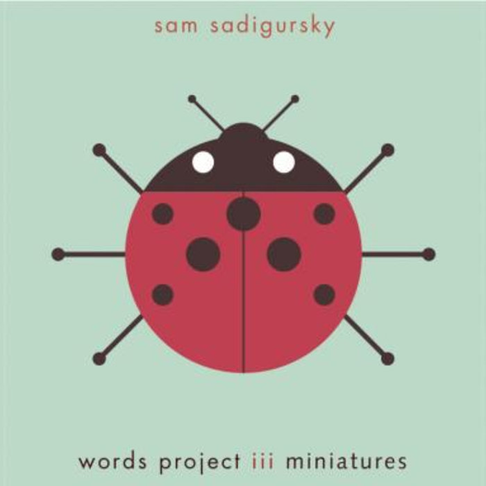 Sam Sadigursky:  WORDS PROJECT III  (2010) musician, recording engineer,  Light
