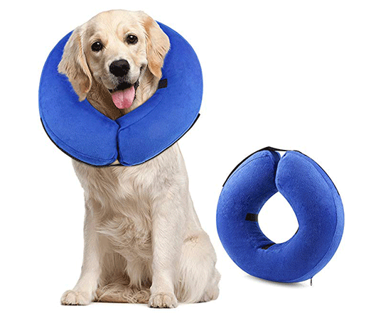 dog-protective-collar.png