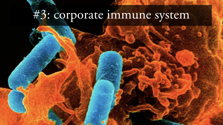 Innovation hubs - corporate immune system.jpeg