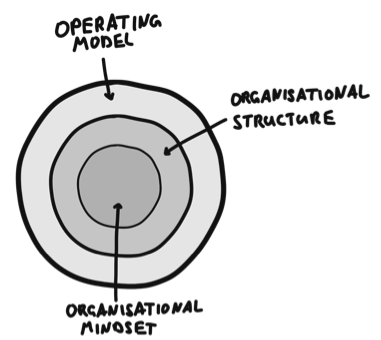 Figure 1. Organisational mindset, structure and operating model