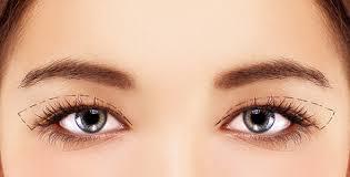 Upper Eyelid - ' Lean more '