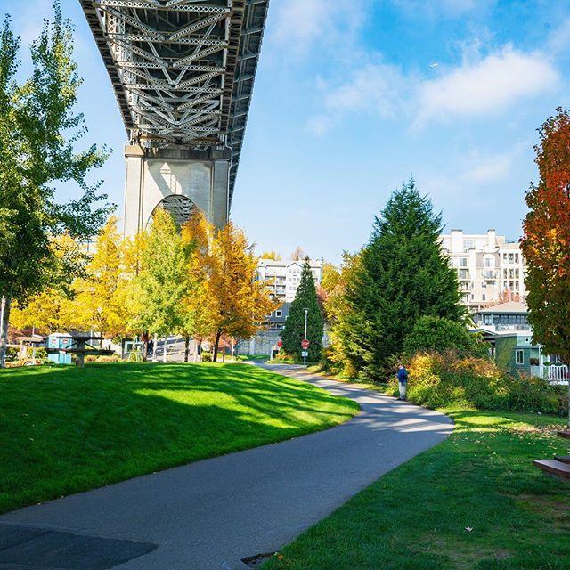 Right beside the Google office 🍁🍃🍂#bridges #leaves