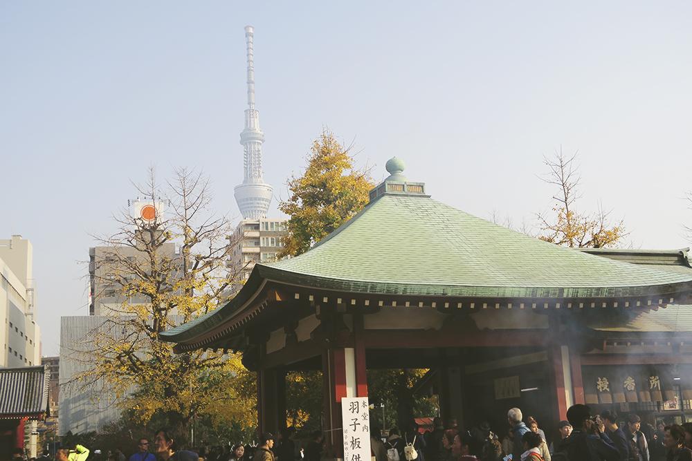 20151216_Japan2015-10
