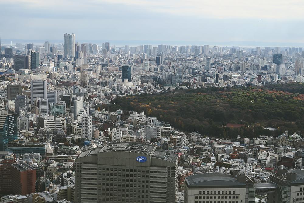 20151217_Japan2015-01