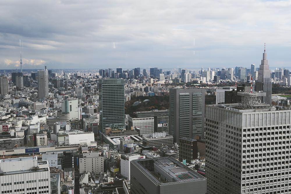 20151217_Japan2015-02