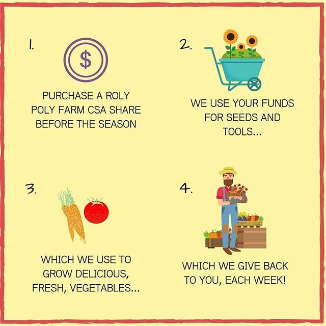 Roly Poly Farm are bringing the CSA model to Perth