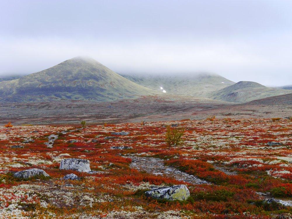 Norway15.JPG