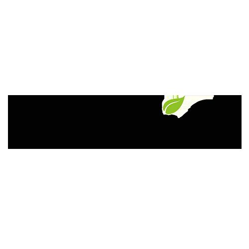 Goodies Logo