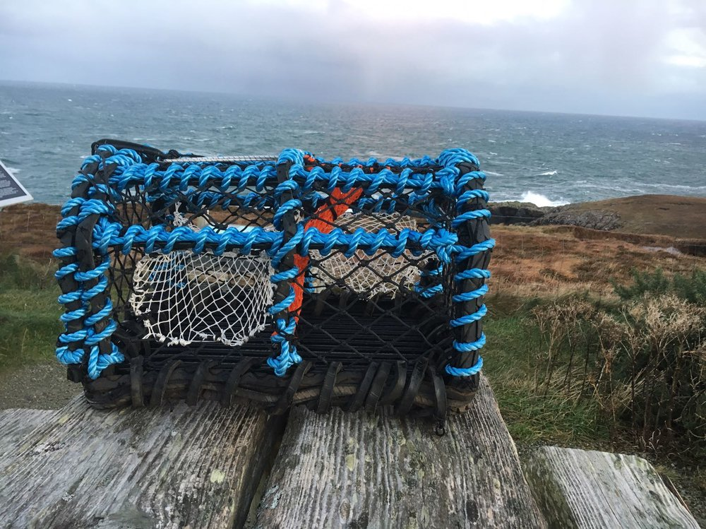 Our Crab and Lobster creels are very well designed to deal with whatever conditions are thrown at them, With an incredibly strong galvanised and plastic coated frame, they are both strong and durable.
