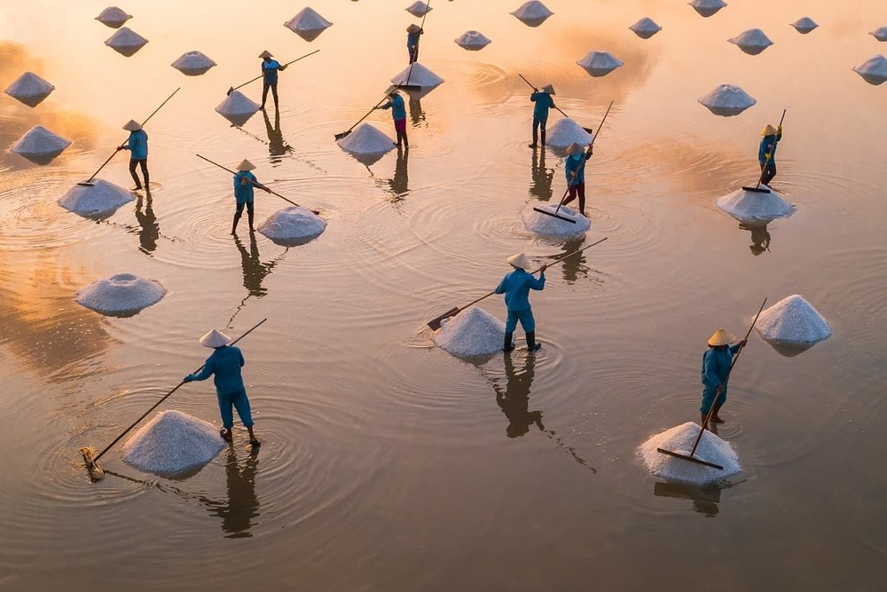 """""""In the salt field"""" by    Trung Pham"""