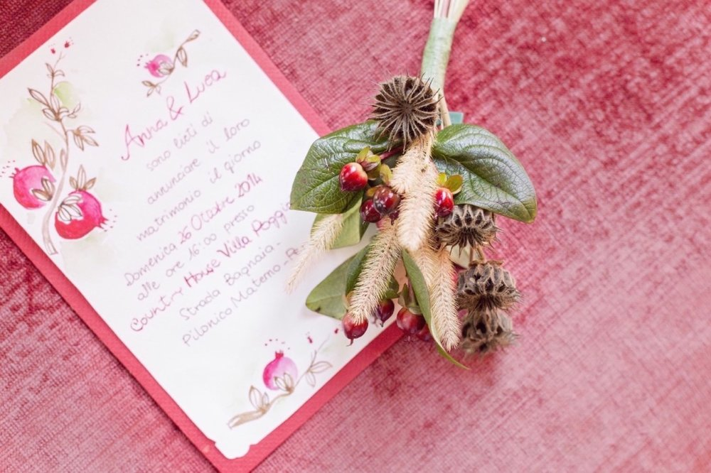 pomegranate stationary