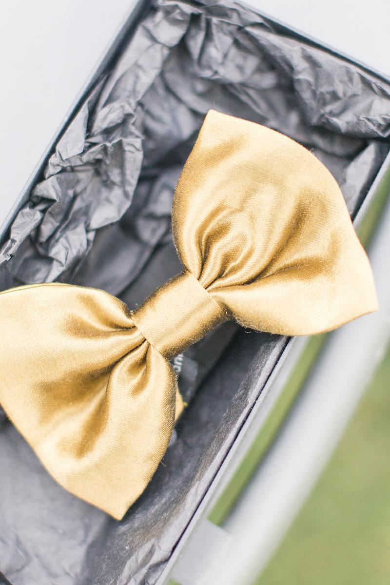 gold papillon.jpg