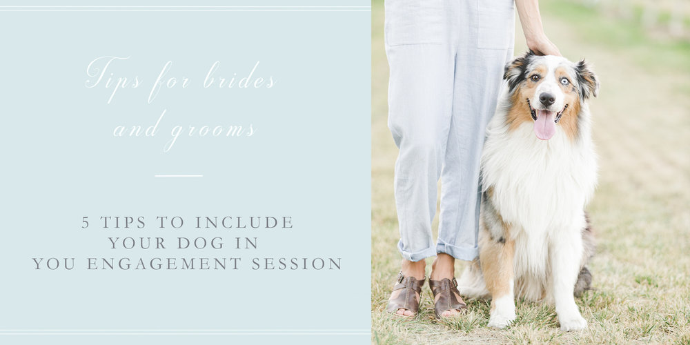 5 tips include dog engagement session.jpg