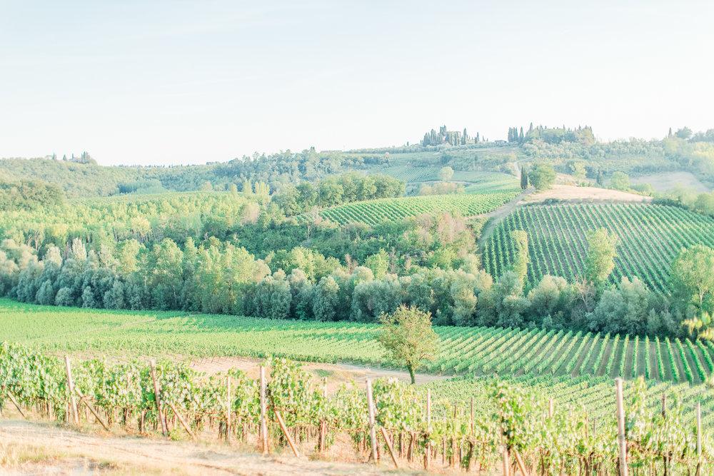 wedding Tuscany.jpg