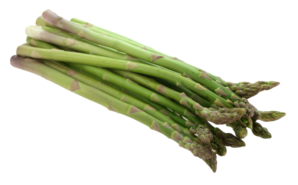 Asparagus-PNG-Image.png