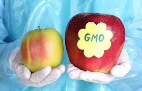 organic vs fresh.jpg