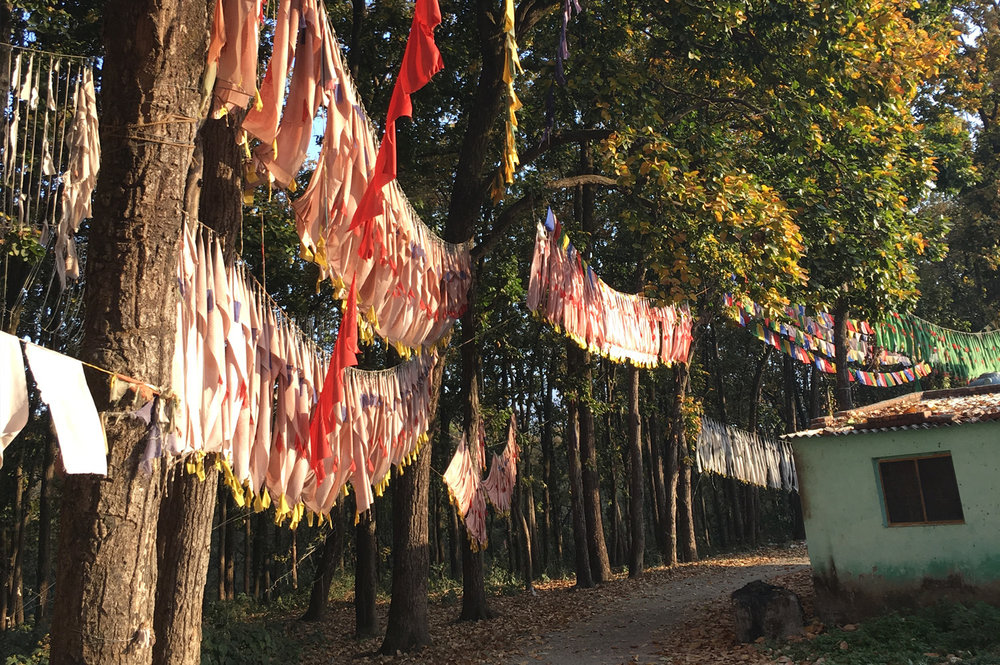 Tibetan Prayer Flags Encircling The Village