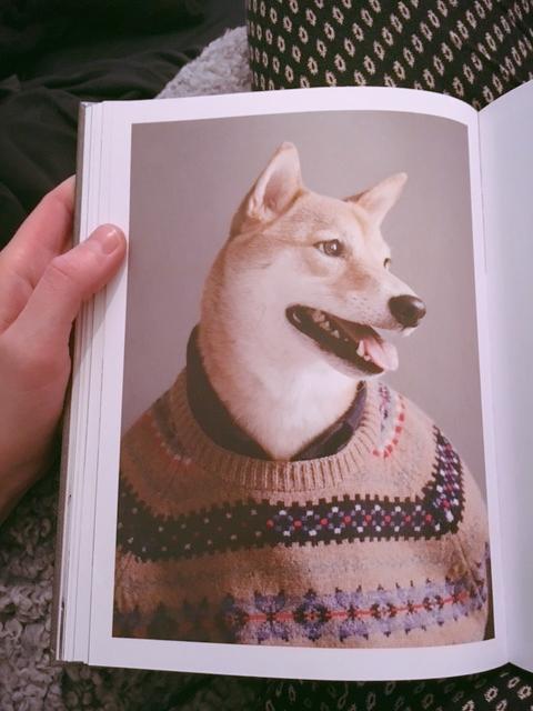 Erään ystävän löhötuolissa lukemassa miesten pukeutumisopasta.