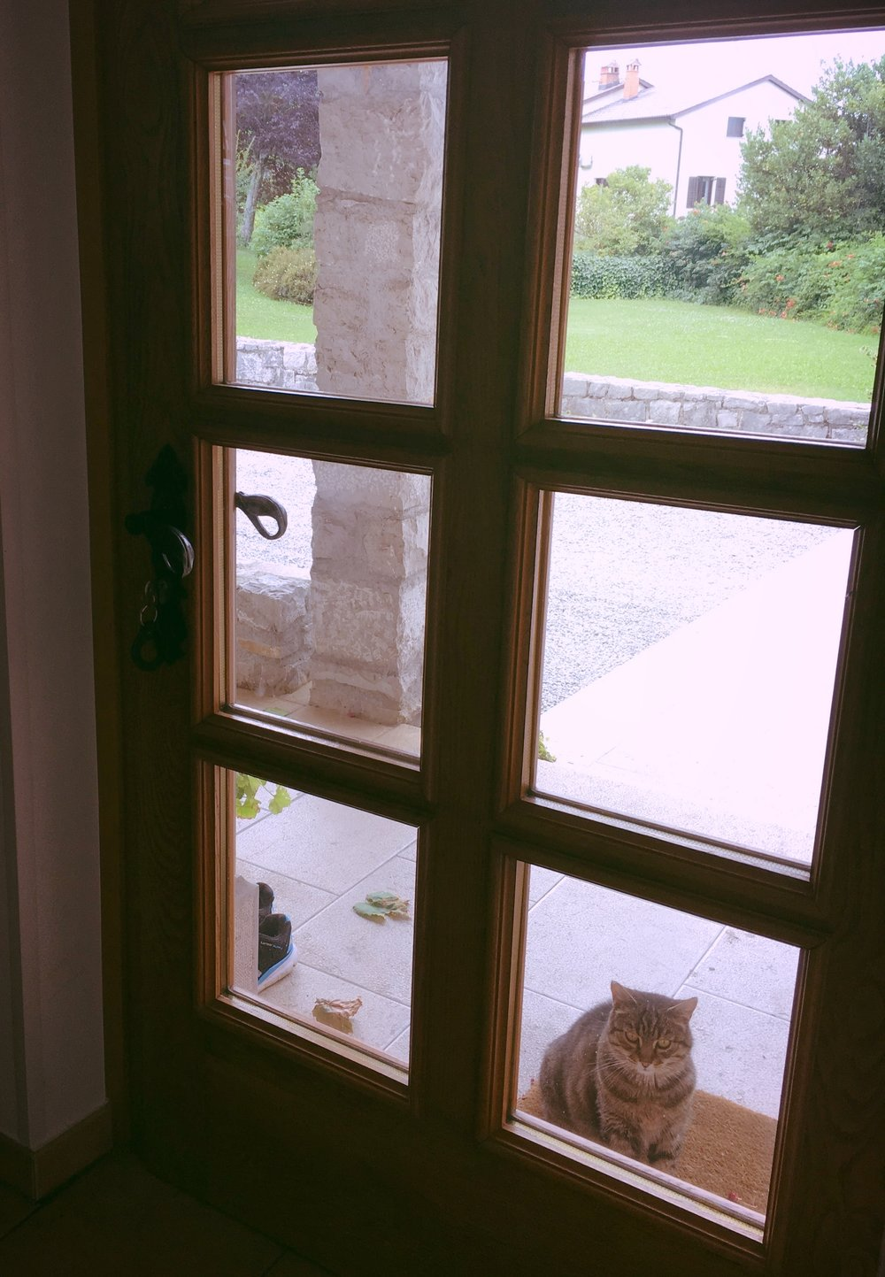 Pääseekö jo takaisin sisälle?