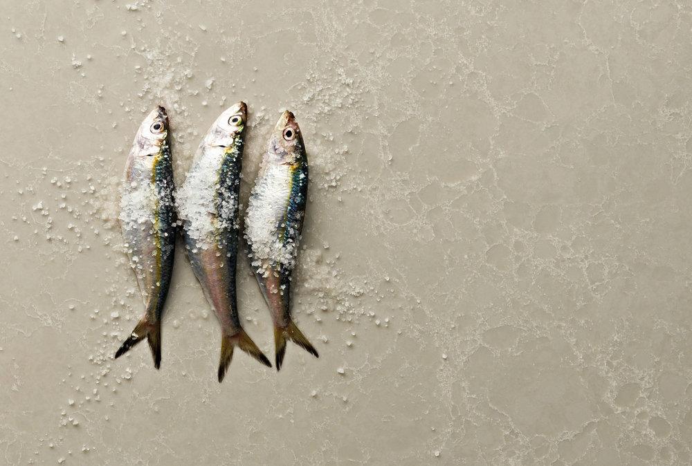 caesarstone•sardines