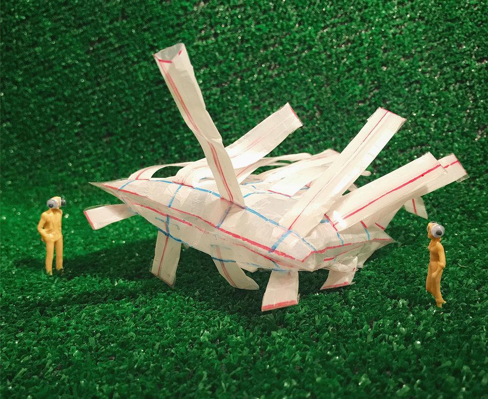 Cattle2_Model1.jpg