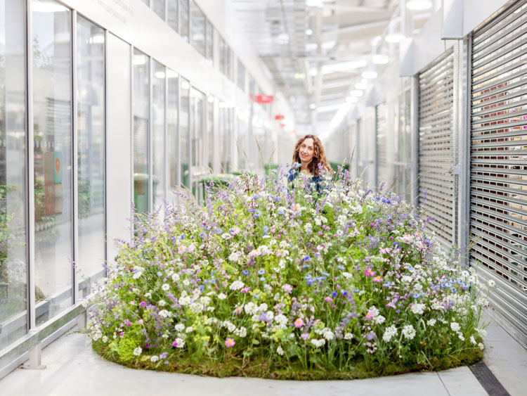 British Flowers Week - New Covent Garden Flower Market is delighted to reveal the identity of the five florists chosen by our judges to be the stars of the British Flowers Week photoshoot 2017...