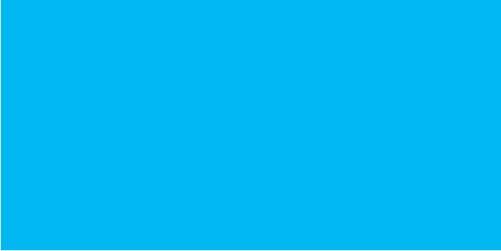 F02 - Blue Gatorade