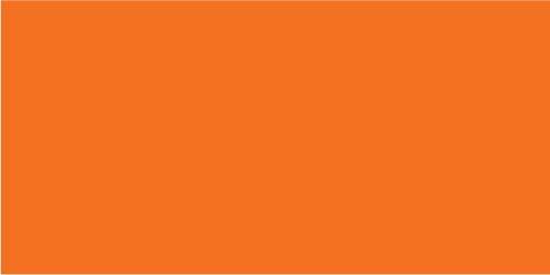 F04 - Orange You Glad