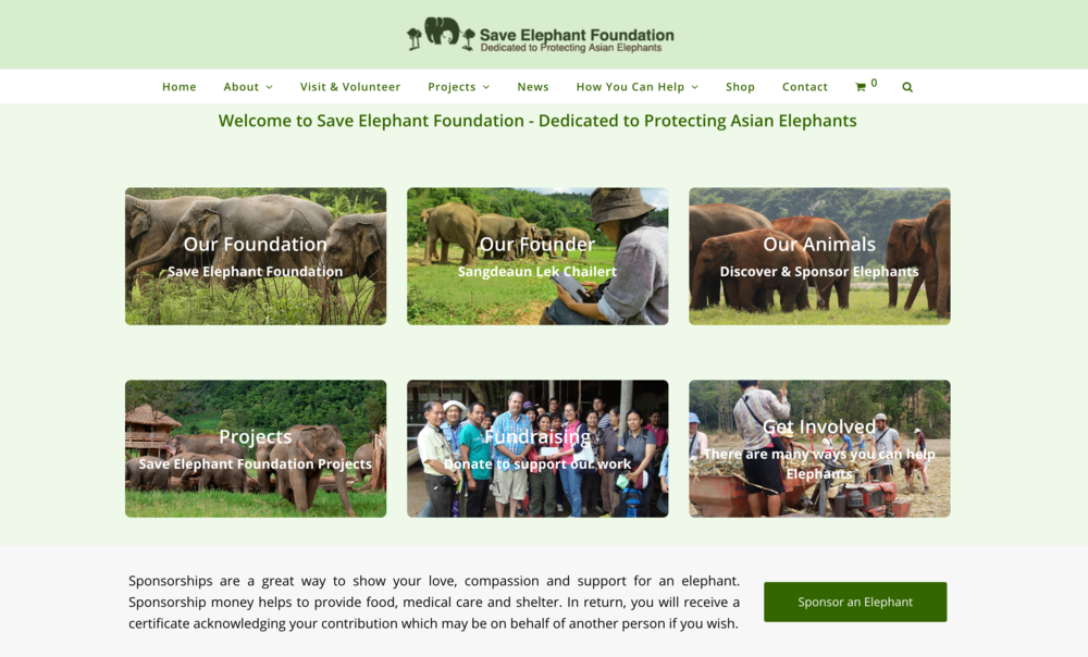Visit Their Site - Learn more about the Sanctuary, donate, or plan to volunteer and lend a hand.
