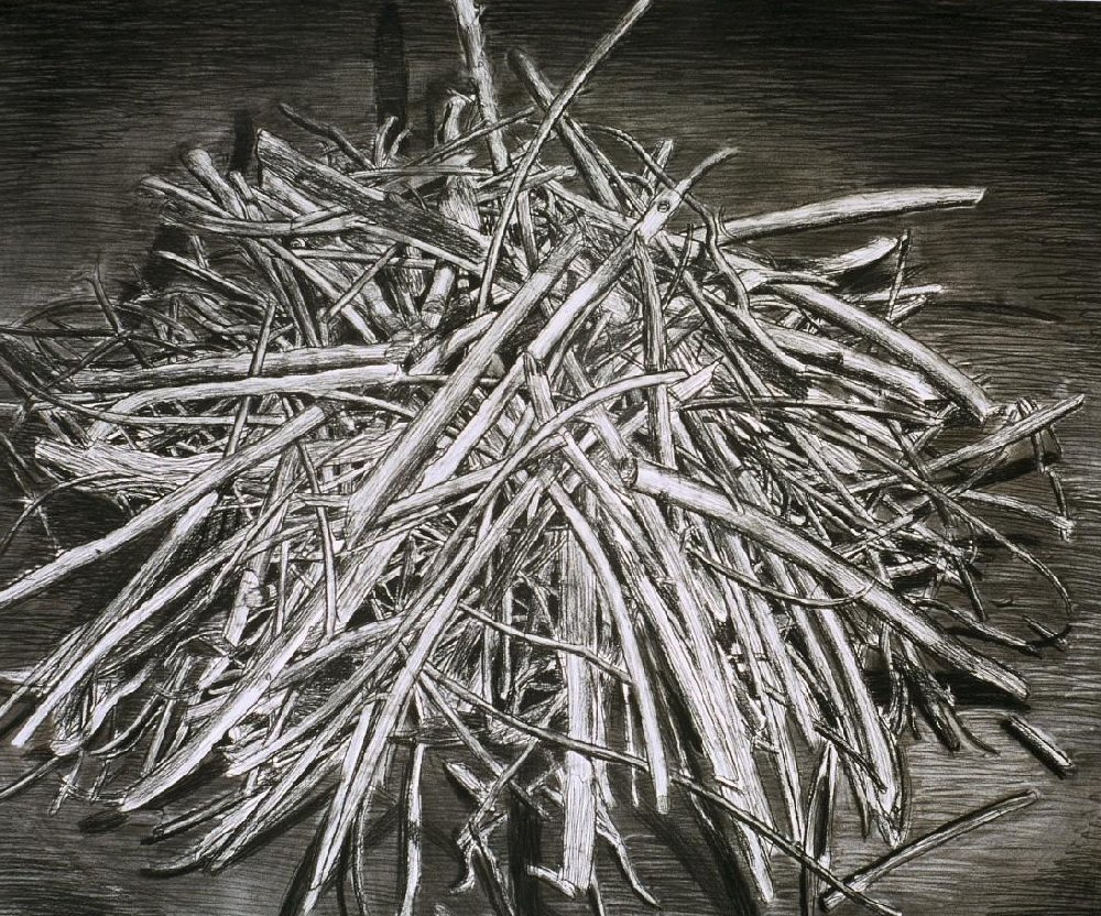 "Stick Pile 2, 40"" x 50"", charcoal on paper, 1994"