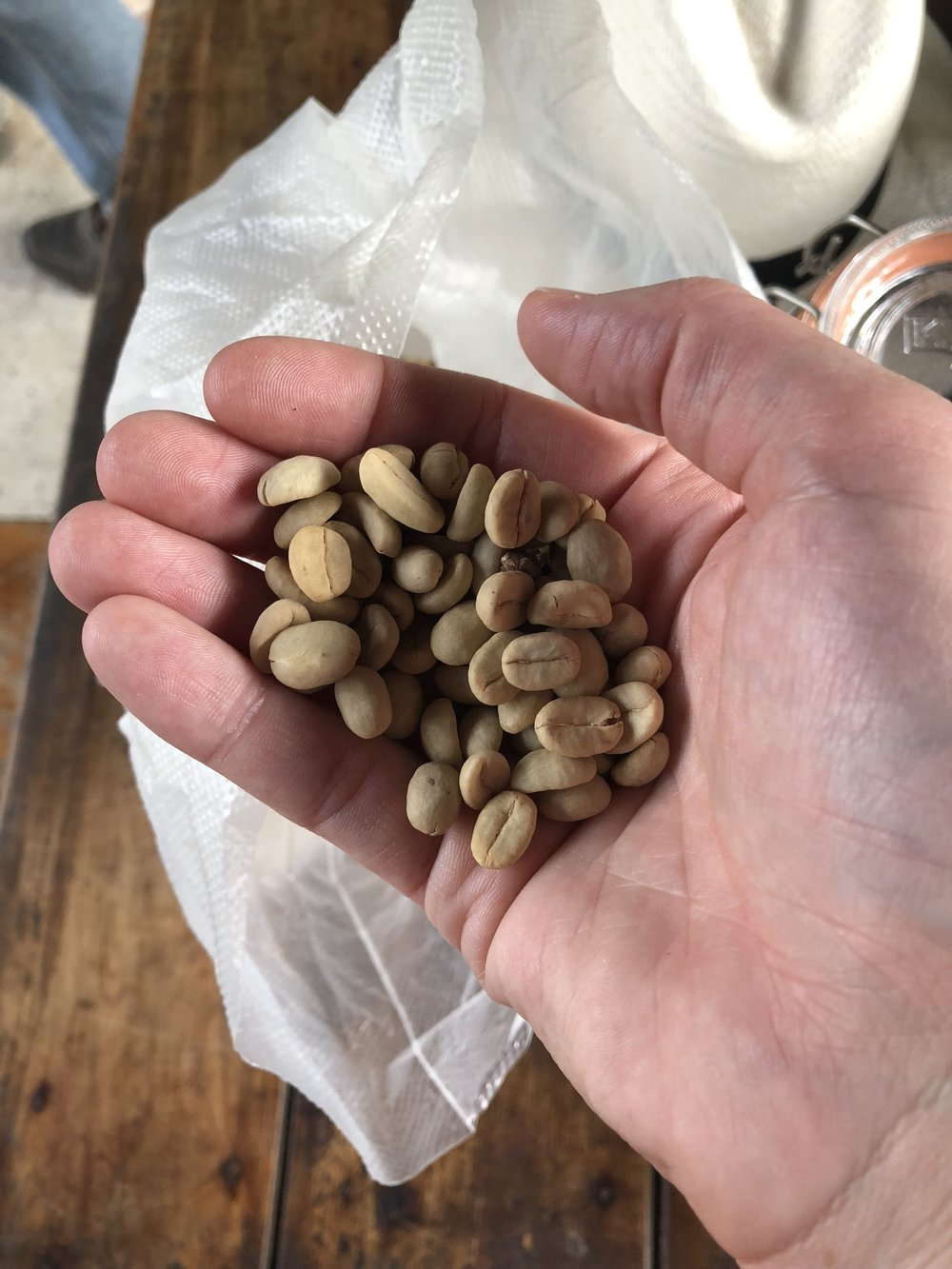 Green coffee beans with skins removed ready for roasting!