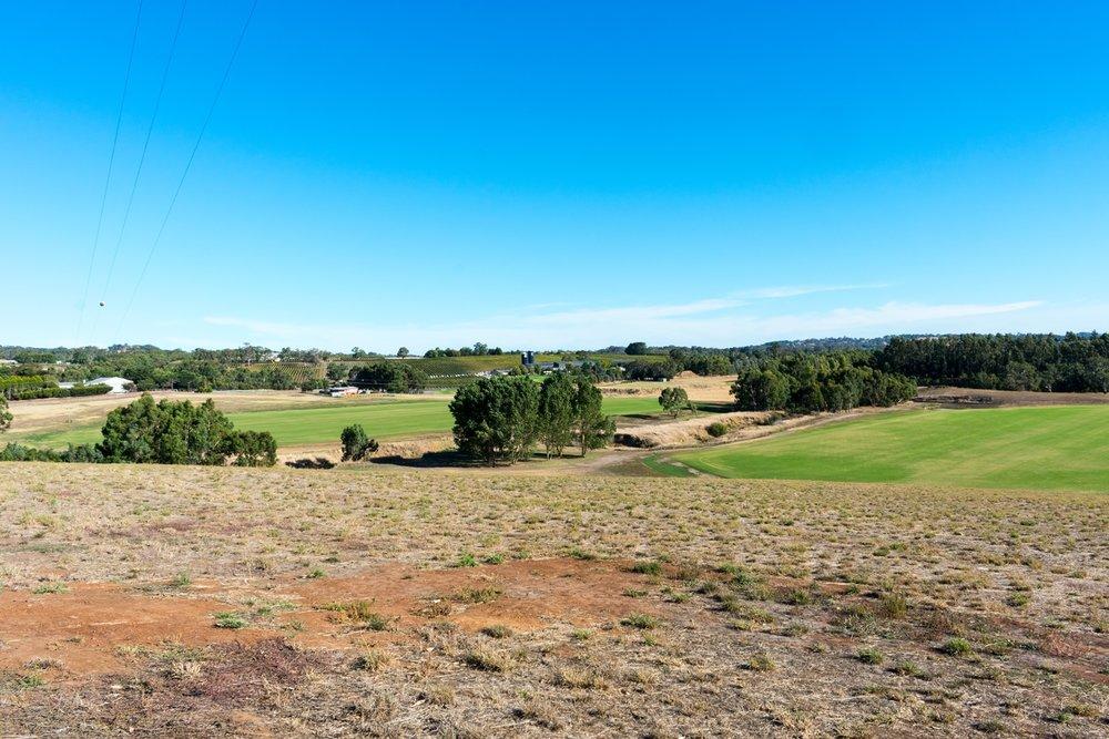 Polo Fields 4.jpg