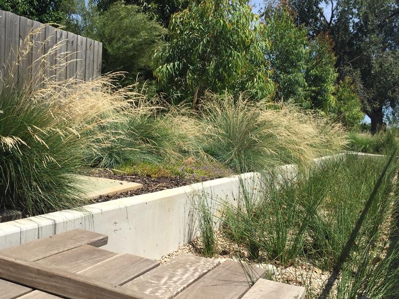 Water Sensitive Urban Design -