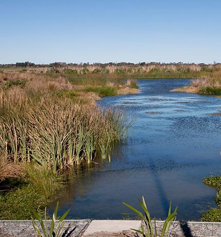 MAURI TU: Environmental mauri (including the human environment) should be enhanced