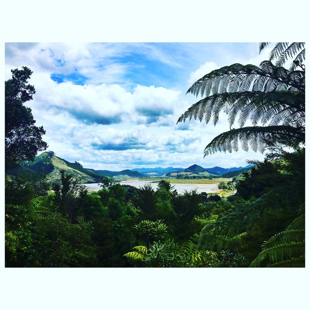 Opoutere on the Coromandel Peninsula