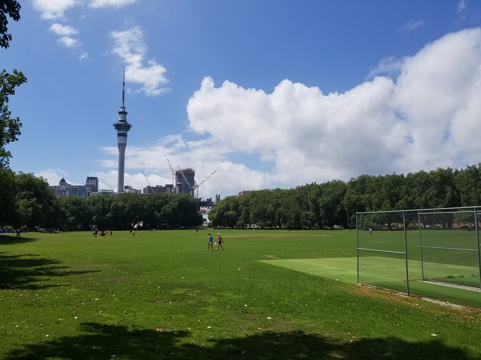 Auckland's Skytower seen from Victoria Park.