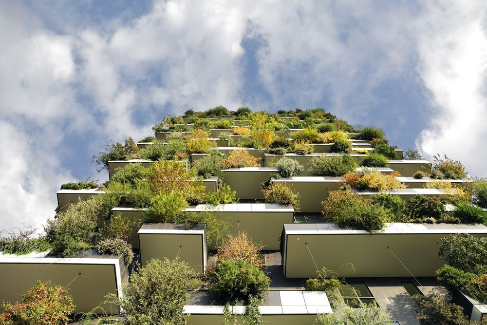 Boeri says his vertical forests help set up urban ecosystems.
