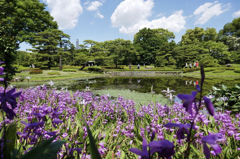 The Kokyo Higashi Gyoen Gardens in Japan. Another of Sutherland's favourite photos.