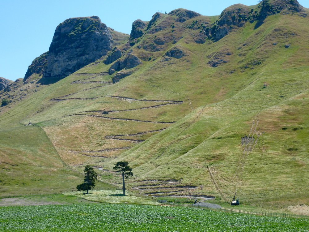 The walking track carved into Te Mata Peak.