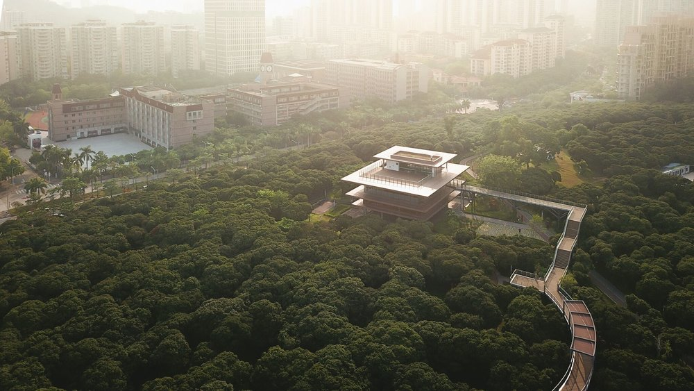 The stunning tree top walkway takes visitors to the Xiangmi Science Library. Photo credit - Vlad Feoktistov.