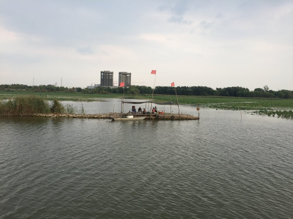 Conference delegates visited Lake Hengshui, the largest freshwater lake in the dry north east corner of China.